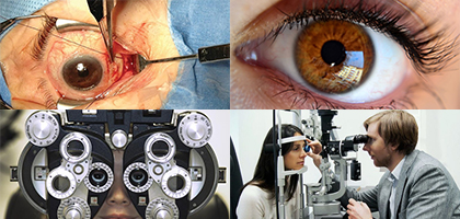 International Journal of Ophthalmology Research
